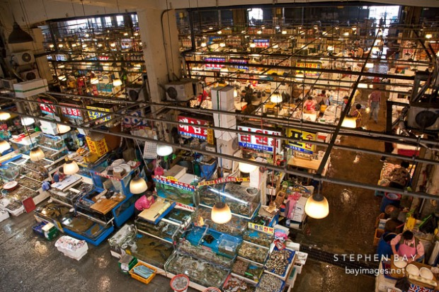 noryangjin-fish-market-seoul-fresh-seafood-21200.jpg